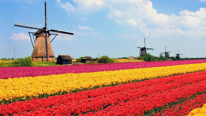 the-netherlands